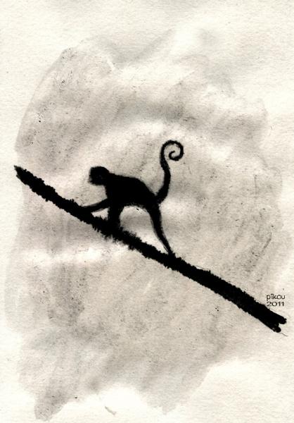 pikou-singe-ombre