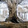 pikou-arbre
