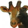 pikou-girafe-des-mers