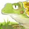 pikou-tortouille